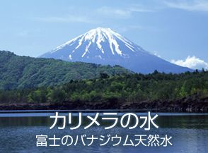 mt.fuji2001